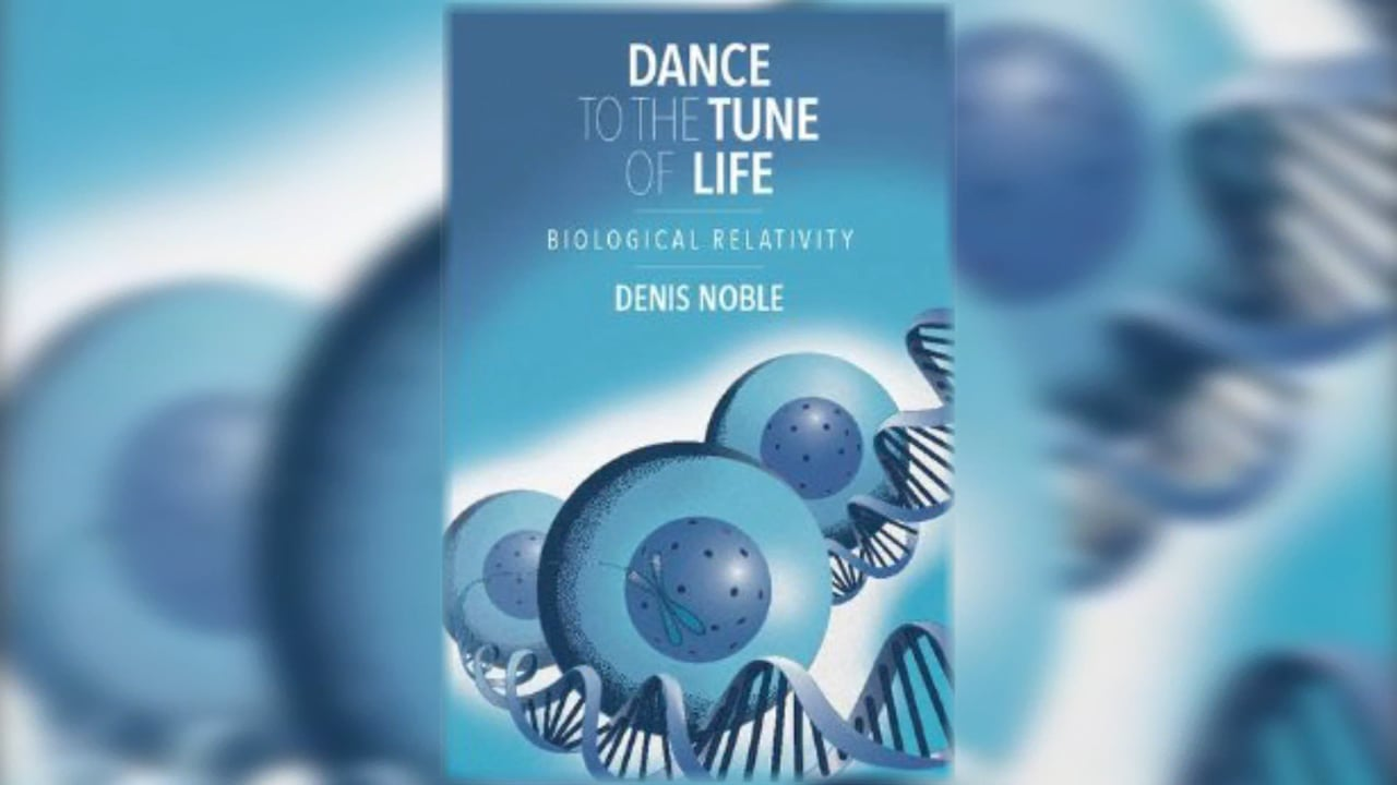 Dance to the Tune of Life Lecture