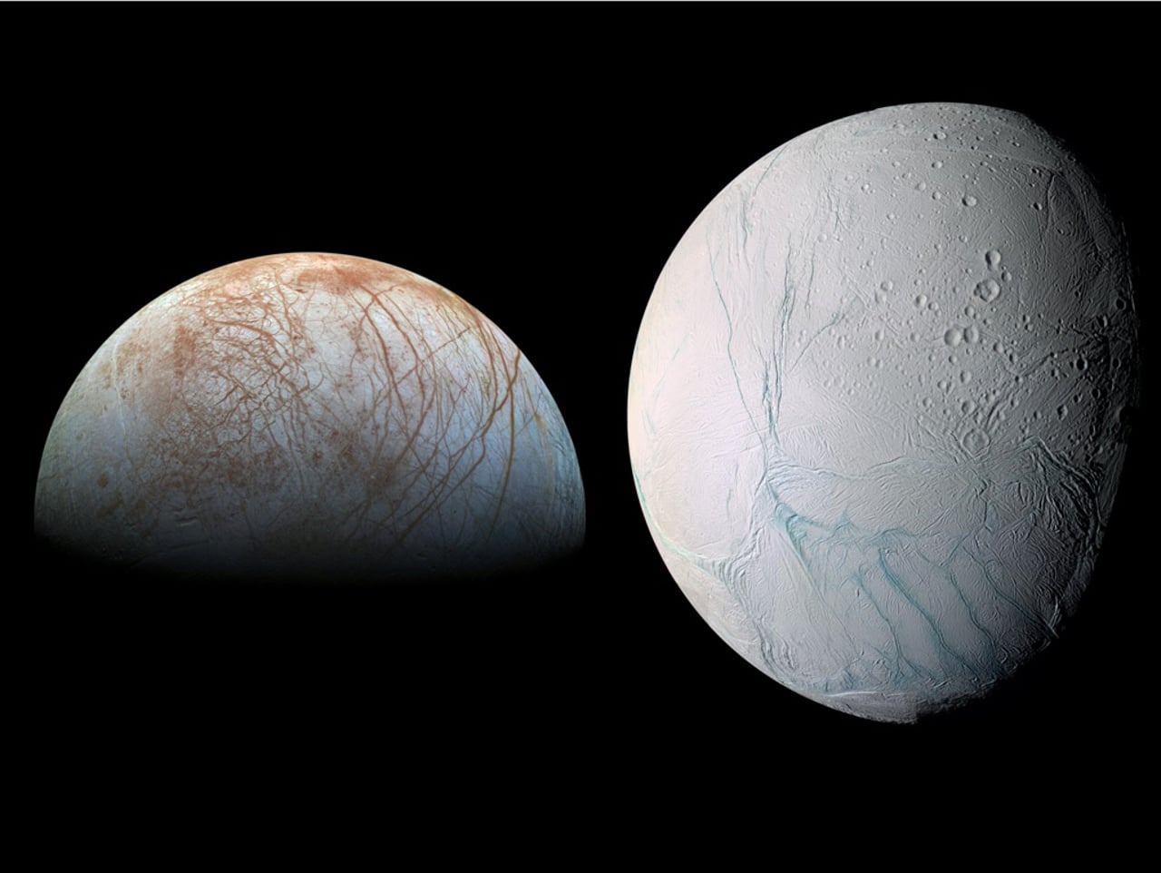 The Prospects for Life on the Icy Moons of Jupiter and Saturn